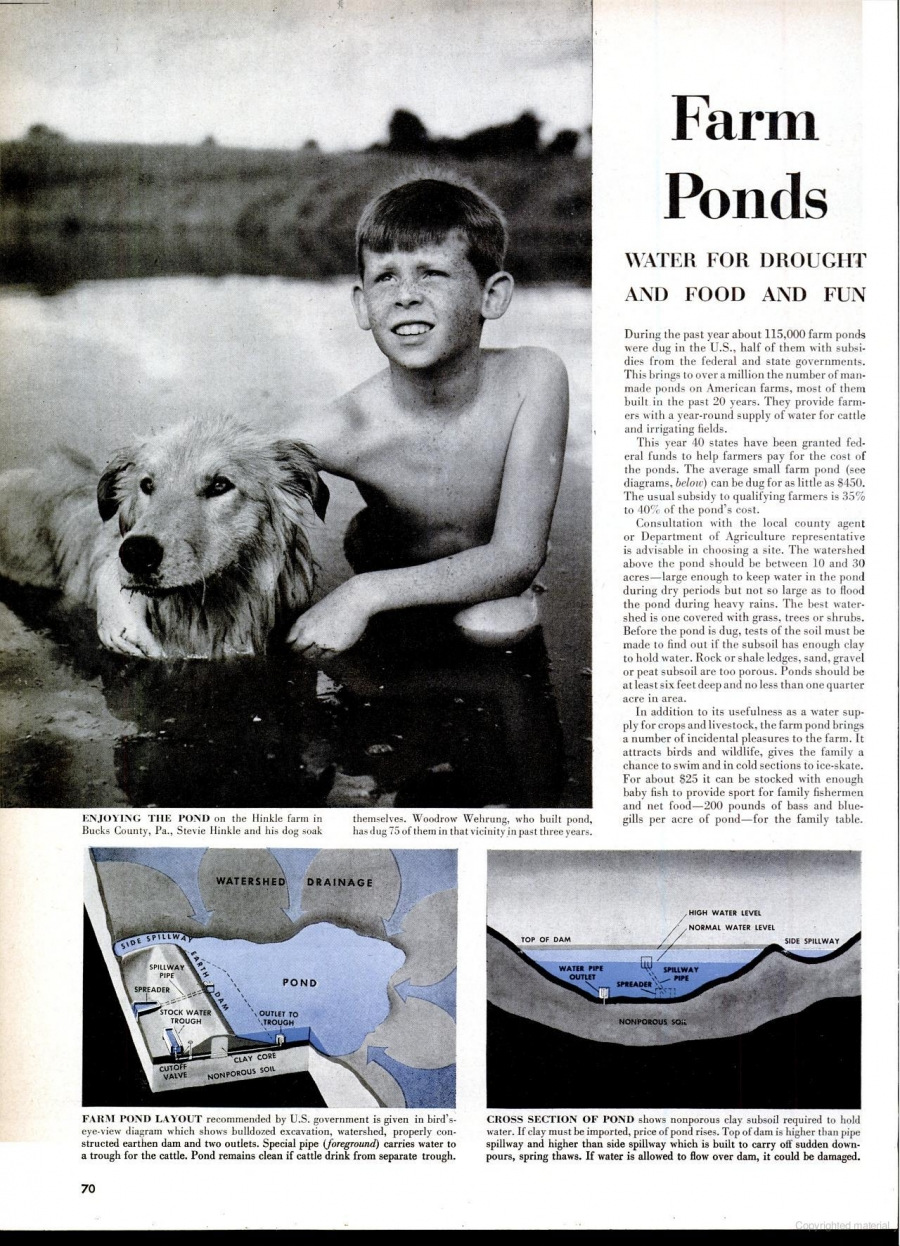 How our grandparents did it: farm ponds in 1950's America
